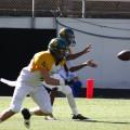 NSU-USchool-FootballRoundup-4
