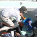 Tagging onboard LR