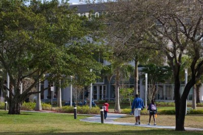 Campus Tree Care Plan