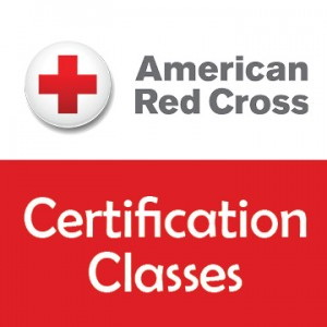 Image result for american red cross certification\