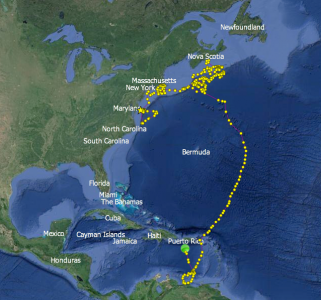 "Shortfin Mako ""St. Mary's"" Shows Interesting Migratory Swim Track"
