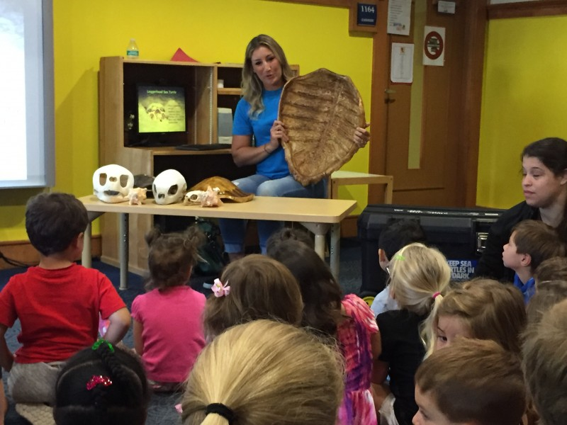 Broward County Sea Turtle Conservation Program shares info with Campers at Mailman Segal Center