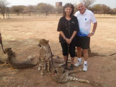 Stephen O'Brien, Ph.D., professor at NSU's Halmos College of Natural Sciences and Oceanography, recently traveled to Namibia where he met with Laurie Marker, D.Phil., a world-leading researcher, conservationist, and founder of the Cheetah Conservation Fund (CCF). The cheetahs (seen in photo) are Africa's most endangered big cat.