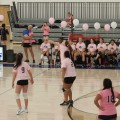 "10th annual ""Dig Pink"" Volleyball game"