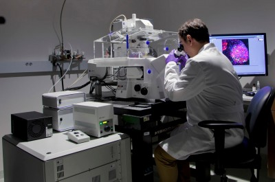 Vladimir Beljanski, Ph.D., observes a cell using NSU's confocal microscope